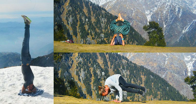 Yoga courses in Dharamsala, India